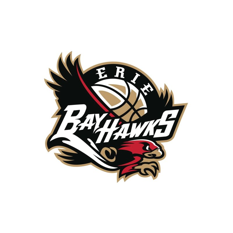 BayHawks training camp begins by Mike Lantinen