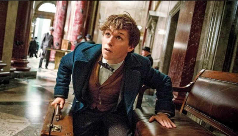 'Fantastic Beasts' a magical reintroduction to the wizarding world by Anna Ashcraft