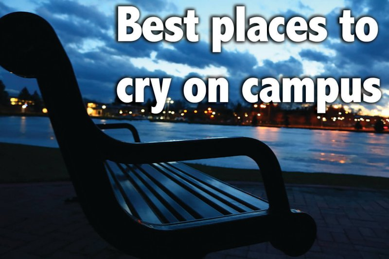 Edinboro's most sob-worthy places for the overly-emotional college student by Macala Leigey