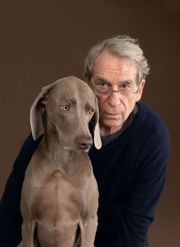 William Wegman to lecture on campus by Kimberly Firestine