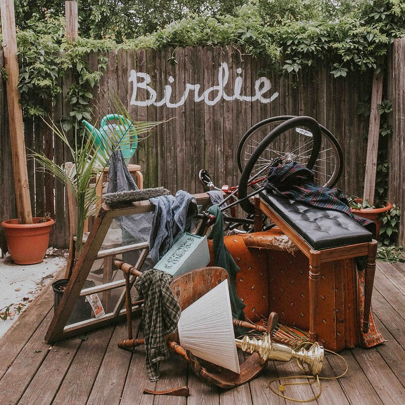Review: Slaughter Beach, Dog — Birdie by Livia Homerski