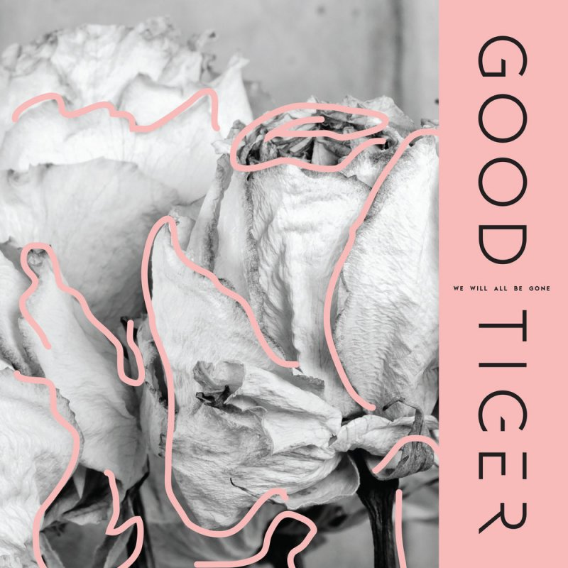 Good Tiger's sophomore release is unfortunately, just good by Livia Homerski