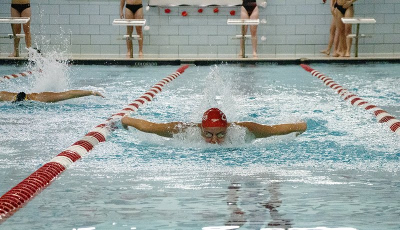 Swimming falls in last meet of the season by Steven McGarvie