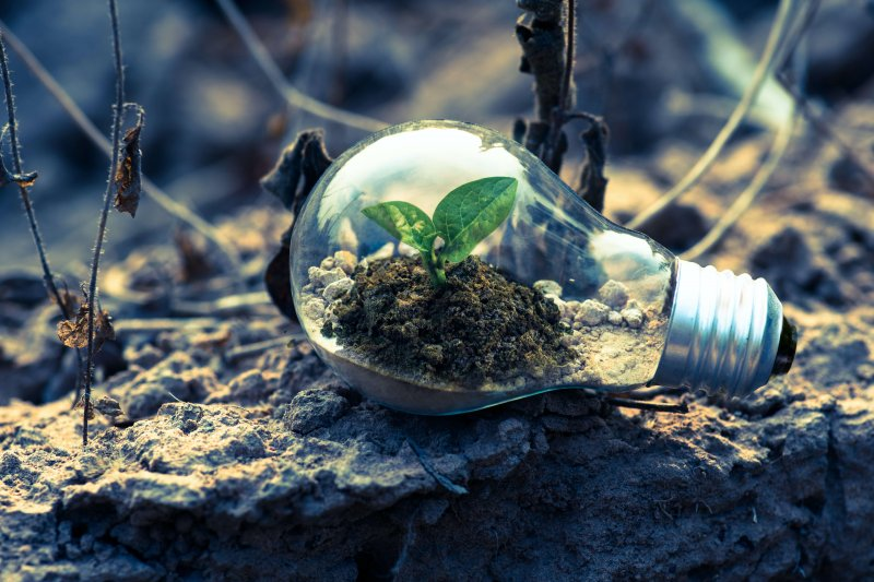 The List: Easy ways to practice sustainability by Emily Anderson